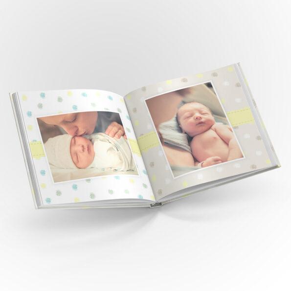 BabyBear raamat ruut preview